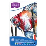 Derwent Academy  Watercolour Pencils Tin of 12 (Min Order Qty 1)