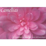 Gift Card Boxed Set Camellias (Min Order Qty 2)