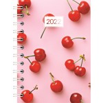 Cumberland Aspen 2022 A5 Day to Page Diary Assorted (Min Order Qty 3) ***Available August 2021***