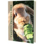 Collins 2021 Calendar Year Diary - Enviro A5 Day to Page Rabbit (Min Order Qty 5)  **Available August 2020**