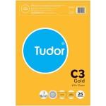 Tudor C3 Envelopes Gold 25 Pack