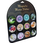 Magnet Set of 12 with Free Display Board (Min Order Qty 1)