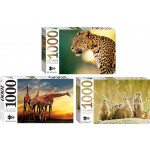 1000 Piece Jigsaw Puzzle Animals - Assorted Box of 6 (Min Order Qty 1)