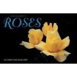 Gift Card Boxed Set Sam McGredy's Roses (Min Order Qty 2)