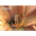 Gift Card Boxed Set Flowers (Min Order Qty 2)