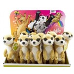 Cuddle Buddies Meerkat - DIsplay of 12