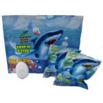 Fizzy Bag Shark - Display of 24